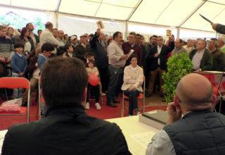 Feria del Ganado, Feria de Mayo: