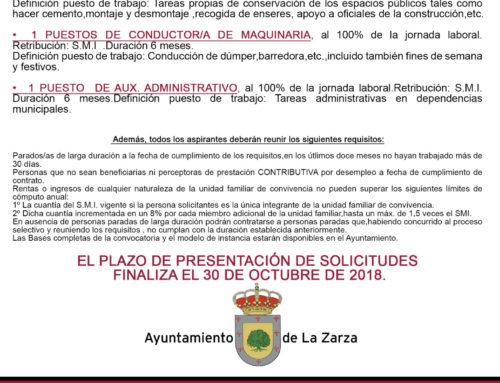 EL AYUNTAMIENTO OFERTA 6 PUESTOS DE TRABAJO POR 6 MESES