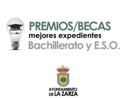 CONVOCADAS LAS BECAS A MEJORES EXPEDIENTES DE BACHILLERATO Y E.S.O.